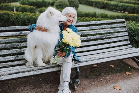 Cute dog kissing happy elderly Caucasian woman in park Reklamní fotografie - 133236726