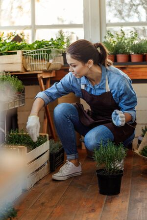 Woman tending plants in a floral shop