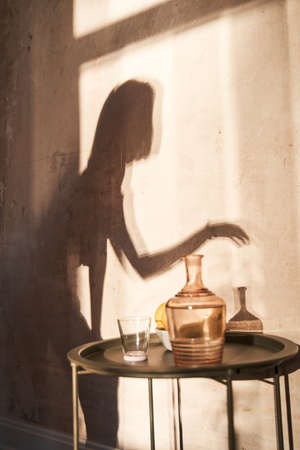 Shadow of the young woman at the wall in a room