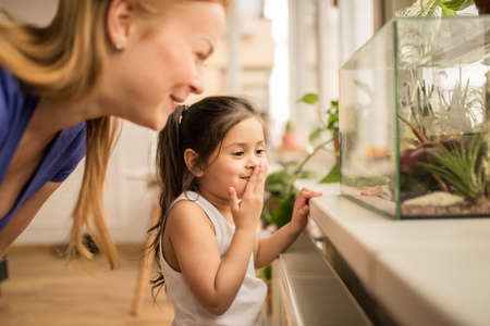 Girl laughing out loud while peeking into the terrarium