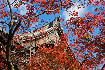 Fall leaves in front of temple roof peak. photo