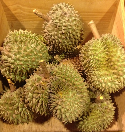 Fresh durian famous fruit