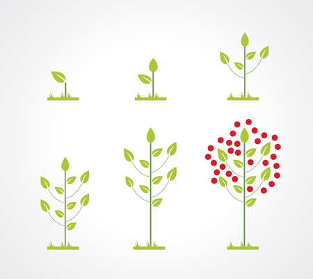 seed pots: Growing tree icon set