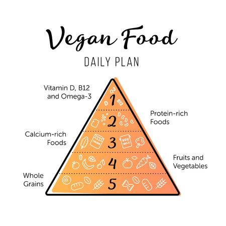 recommendations: Food pyramid healthy vegan eating infographic. Recommendations of a healthy lifestyle. Thing line icons of products. Vector poster.