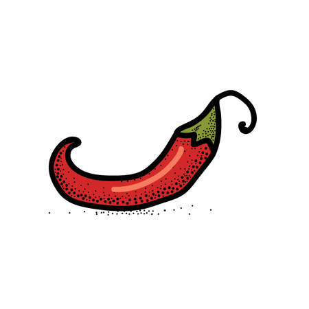 Chili Pepper hand drawn vector illustration. Vegetable artistic style object. Isolated hot spicy mexican pepper. Comic style icon.