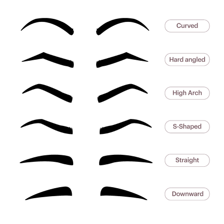 Eyebrow shapes. Various types of eyebrows. Classic type and other. Trimming. Vector illustration with different thickness of brows. Makeup tips Иллюстрация