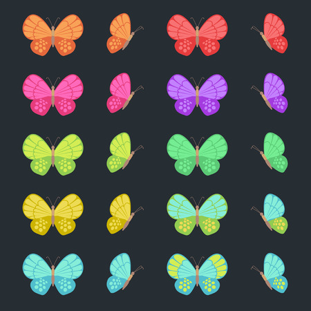 Colored butterflies isolated on dark background. Flat vector butterfly set