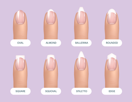 Set of simple realistic natural manicured nails with different shapes. Vector illustration for your graphic design