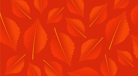 Autumn orange background with leaves. Modern pattern for shopping sale, promo poster or web banner. Vector illustration template Çizim