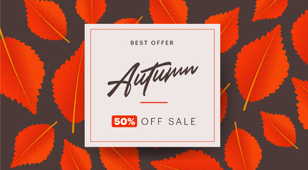 Autumn background layout decorate with leaves for shopping sale or promo poster and frame leaflet or web banner. Vector illustration template Çizim