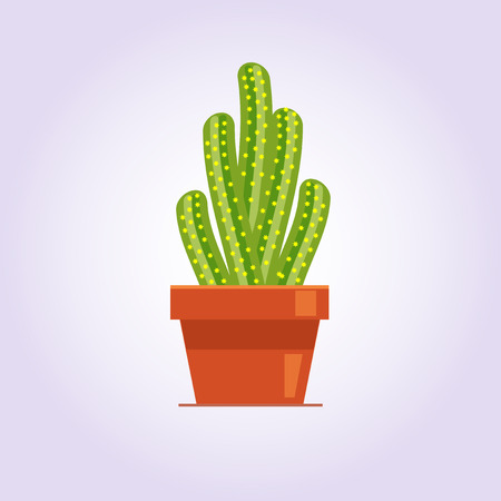 Decorative cactus with prickles on the white background. Home plant in pot. Flat style icon.