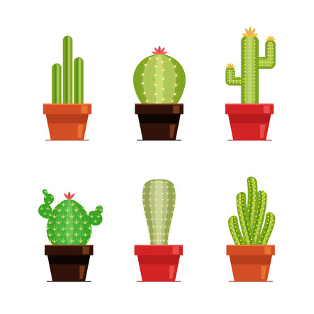 Decorative cactus set with prickles on the white background. Home plants cactus in pots and with flowers. Flat style icons Çizim