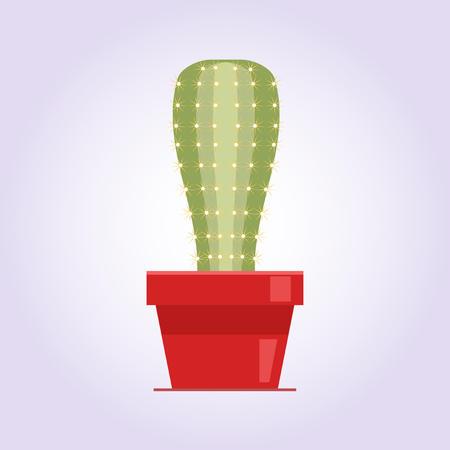Decorative cactus with prickles on the white background. Home plant in pot. Flat style icon