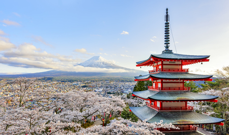Chureito Pagoda and Sakura Trees with Fuji-san Background in Spring