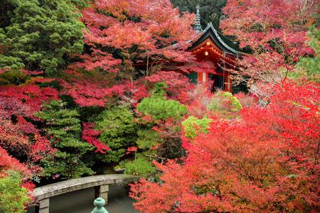 hojo: Bell Tower in The Zen Garden of Bishamondo Temple in Autumn