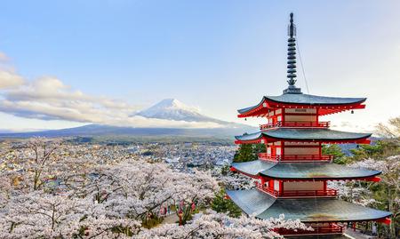 Sakura with Fuji Mountain in Blue Sky Day at Chureito Pagoda