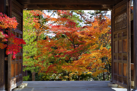 Colourful Autumn in Nison-in Temple, Kyoto, Japan
