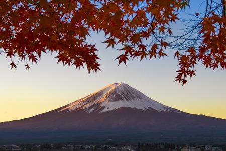 Fuji Mountain and Red Maple Leaves at Kawaguchiko