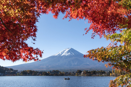 Fuji Mountain and Red Maple at Kawaguchiko Lake in Autumn, Japan Фото со стока