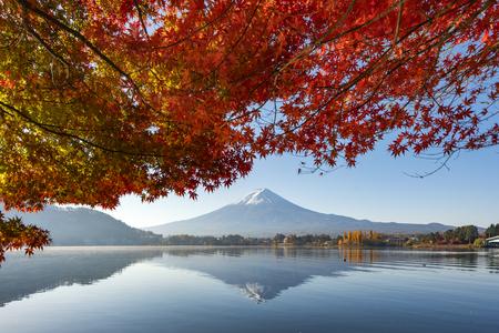 Fuji Mountain Reflection and Red Maple Trees at Kawaguchiko Lake, Japan