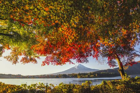 Fuji Mountain Reflection and Red Maple Leaves with Morning Mist in Autumn, Kawaguchiko Lake, Japan Foto de archivo