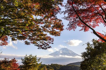 Fuji Mountain in Cloudy Day with Red Maple Leaves in Autumn at Kawaguchiko Lake, Japan