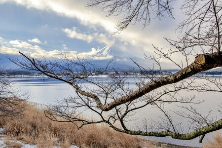 Fuji Mountain in Winter at Kawaguchiko Lake, Japan