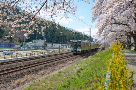 JR Sendai train is going from Sendai station to Fukushima station near Shiroishi river in Spring