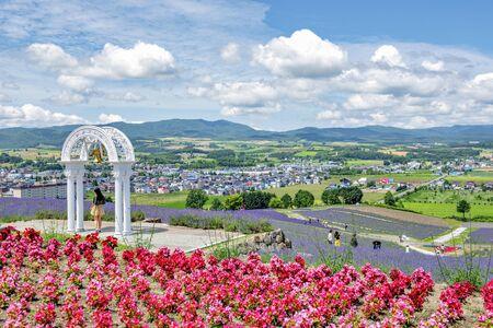 Tourists enjoy sightseeing Colourful Flower and Lavender Garden on Hillside of Hinode Park in Summer, Furano, Hokkaido, Japan Foto de archivo