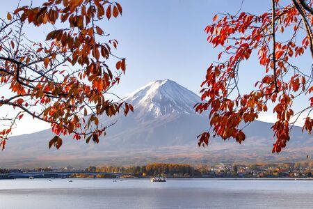 Fuji Mountain and Red Sakura Leaves in Autumn at Kawaguchiko Lake, Japan