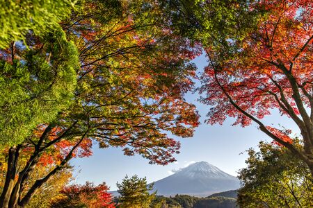 Fuji Mountain and Colourful Maple Trees at Kawaguchiko Lake in Autumn, Japan Foto de archivo - 150514988