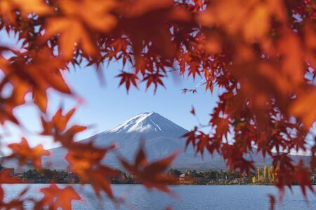 Fuji Mountain in the Red Maple Leave Heart Frame in Autumn, Kawaguchiko Lake, Japan Foto de archivo