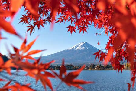 Fuji Mountain in Autumn Red Maple Leaves Frame at Kawaguchiko Lake, Japan Foto de archivo - 152867633