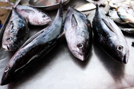 Fresh fishs in market Stock Photo