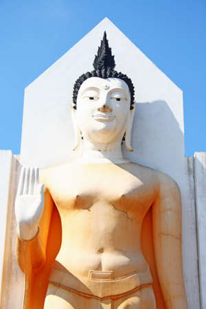 Standing buddha in central of Thailand