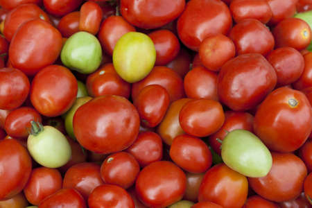 Fresh green, yellow, and red tomatoes in market Stock Photo