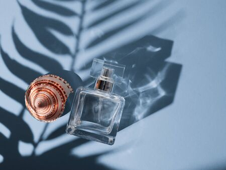 Glass bottle for perfume with shells on a blue background with a shadow from a tropical plant. Фото со стока