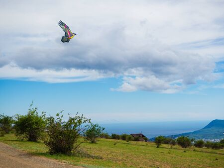Colorful kite against the background of clouds. Banque d'images