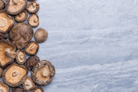 Dried Mushroom on grey texture background with copy space, top view
