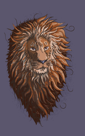 Proud calm lion with lush wool growing in the wind. Colorful beautiful drawing of a lion's head on a purple background.