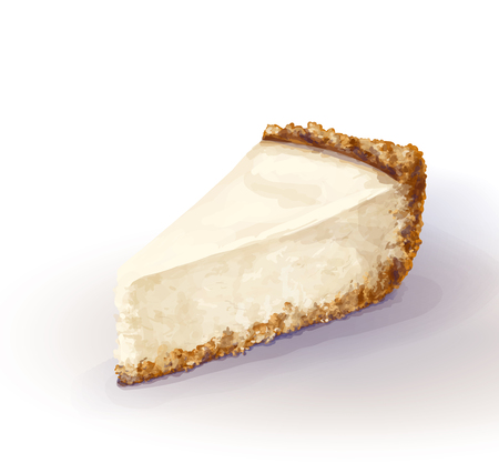 Vector piece of cheesecake cake with airy and tender, delicate creamy-curd cheese. Crisp and crumbly cake with back, appetizing, realistic, homemade cakes, drawn by hand. Tasty, healthy, delicious