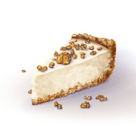 Vector piece of cheesecake cake with airy and tender, delicate creamy-curd cheese. Crisp and crumble cake with back, appetizing, realistic, homemade cakes, with walnuts. Tasty, healthy, dainty, regale
