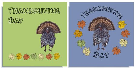 Vector set of postcard patterns. Thanksgiving day, colorful fowl, turkey, hand-drawn, graphic, real-style, calligraphy lines. Seasonal colors: yellow, red, brown, blue. Looks funny, beautiful, holiday