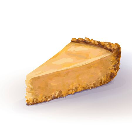 Vector base piece of pumpkin cheesecake cake with tender, delicate creamy-curd cheese. Crisp and crumbly cake with back, appetizing, realistic, homemade cakes, hand drawn. Tasty and healthy, delicious Illustration