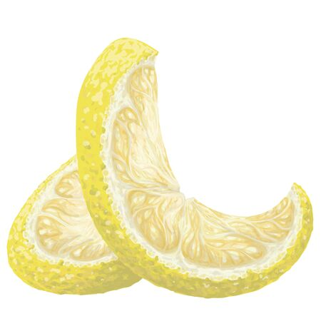 Vector isolated pattern object, hand-drawn harvest juicy, delicious rich wet yellow lemon piece, with highlights, beautiful peel of lemon. Realistic, like paint. Ripe, juicy, tasty lemon as ingredient Stock Illustratie