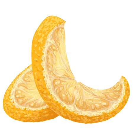 Vector isolated pattern object, hand-drawn harvest juicy, delicious rich wet shine orange piece, with highlights, beautiful peel of orange. Realistic, like paint. Ripe, juicy, tasty orange ingredient Vektorové ilustrace