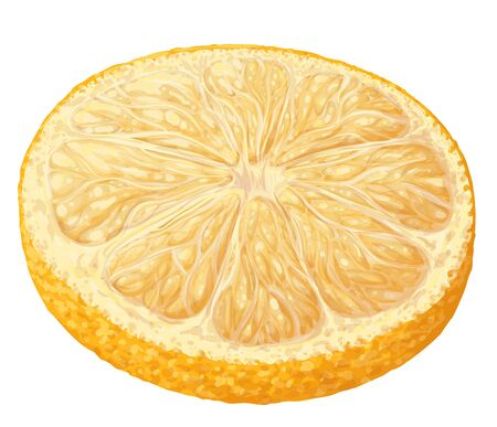 Vector isolated pattern object, hand-drawn harvest juicy, delicious rich wet shine orange piece, with highlights, beautiful peel of orange. Realistic, like paint. Ripe, juicy, tasty orange ingredient
