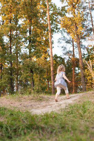 Young cute blonde girl running up th hill on grass to the autumn pine forest at sunset, back to camera,