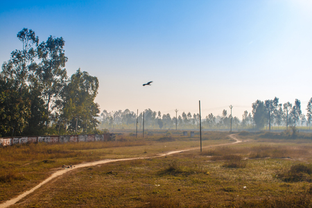 Traveling by train in India. View from an opened train door with a colorful landscape, morning fog and flying bird in the blue sky. Stock Photo