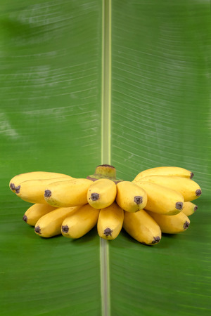 vertically: Banana on green leaf vertically Stock Photo